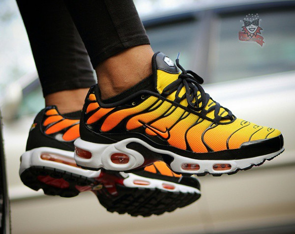 air max plus la requin